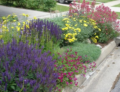 Deseret nursery perennial farm perennial garden design if the entire yard is going to be planted in perennials without any turf grasses an increasing trend some type of a pathway through the midst of the mightylinksfo